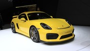 Porsche Cayman GT4 : animal sauvage