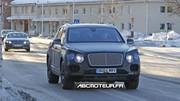 Spy-shots : le SUV Bentley presque à découvert
