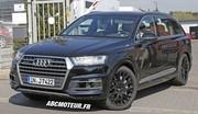 Les premières photos de l'Audi SQ7 !