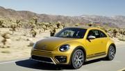 Volkswagen Coccinelle Dune 2015 : la Cox en mode baroudeuse