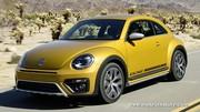 Coccinelle Dune, le capital de Volkswagen