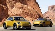 VW Coccinelle Dune : l'esprit buggy !