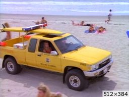 divers LIFEGUARDS Cars